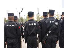 威海保安公司安保力量存在的优势