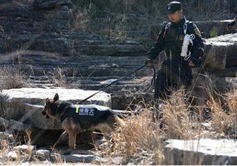 保安服务人员怎样在自我保护的情况下做好工作!